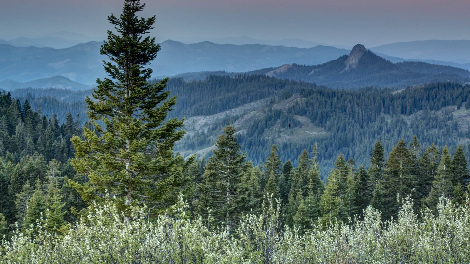 <h4>CASCADE-SISKIYOU (OREGON): THREATENED</h4><h5>Oregon's Cascade-Siskiyou National Monument would see more logging and be reduced in size.</h5><em>Bob Wick / BLM</em>